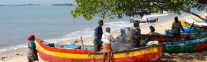 Pure-Kerala-Tours-banner-boats-shore