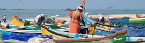 Pure-Kerala-Tours-banner-coloured-boats