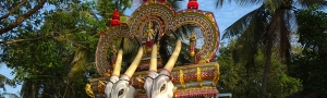Pure-Kerala-Tours-banner-festival-float