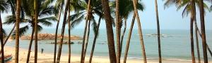 Pure-Kerala-Tours-banner-palms-beach