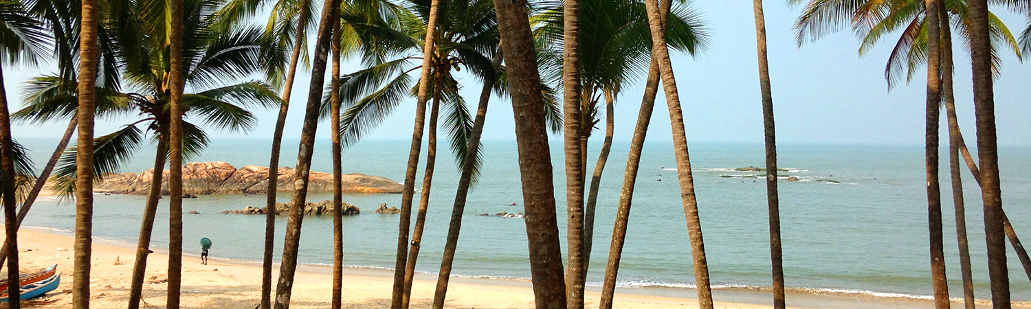 Pure-Kerala-Tours-banner-palms-beach