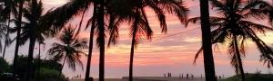 Pure-Kerala-Tours-banner-sunset-palms